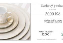 DÁRKOVÝ POUKAZ 3.000,- Kč